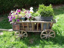 Een oude handkar vol met planten en bloemen.