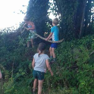 Kinderen die op zoek zijn naar takken en hout voor het kampvuurhe