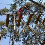 Afbeelding van klimmen in de bomen in een klimpark.